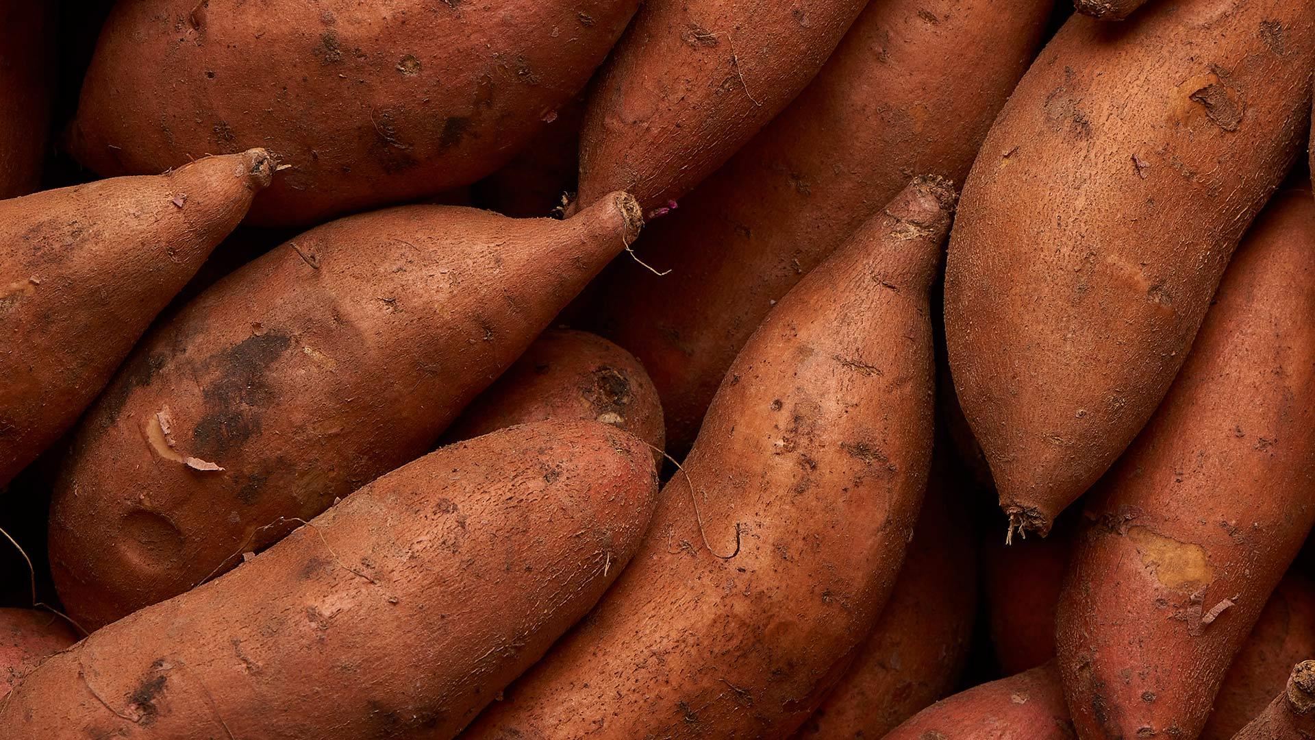 productfotografie zoete-aardappel